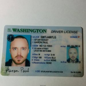 Buy Fake US ID Card Online. The Best Quality