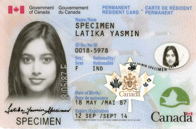Buy Fake And Real Canadian ID card online. The Best Quality